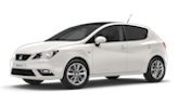 Seat Ibiza Custom ECU Remap