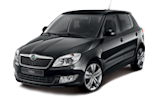 Skoda Fabia Custom ECU Remap